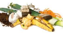 Gaspillage alimentairetest